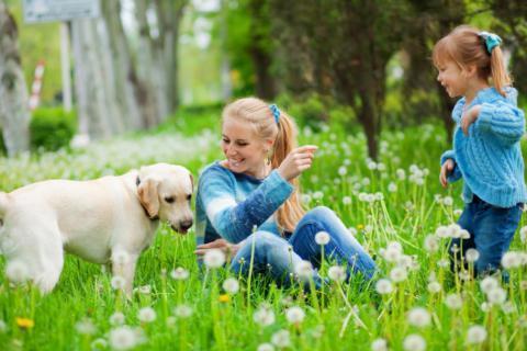 Mutter und Tochter mit Hund auf einer Blumenwiese. JUFA Hotels bietet erholsamen Familienurlaub und einen unvergesslichen Winter- und Wanderurlaub.