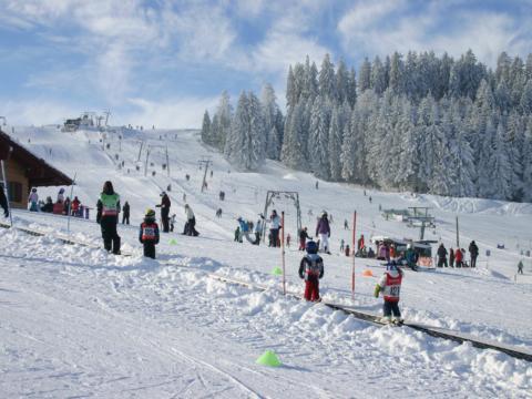 Kinder beim Schifahren auf der Piste in Eschach