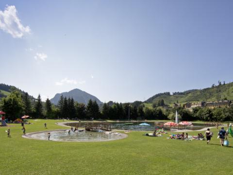 Liegewiese mit Menschen im Freizeitpark Pichl in Schladming