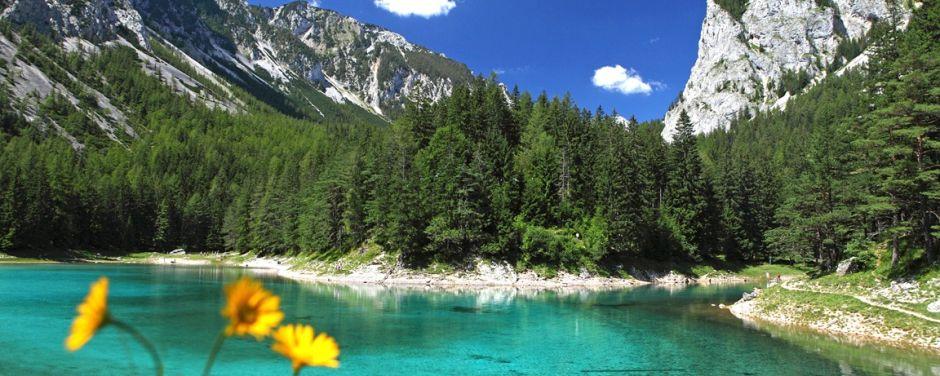 Sie sehen den Grüner See im Mariazeller Land mit Berpanorama im Sommer. JUFA Hotels bietet Ihnen den Ort für erlebnisreichen Natururlaub für die ganze Familie.
