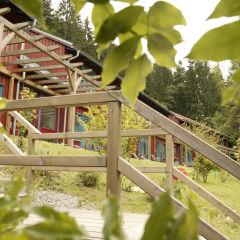 Aussenansicht durch Blätter mit Treppe vom JUFA Natur-Hotel Bruck. Der Ort für erfolgreiche und kreative Seminare in abwechslungsreichen Regionen.