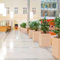 Gemütlicher Lobbybereich zum Entspannen mit Sicht auf Rezeption im JUFA Hotel Wien City. Der Ort für erlebnisreichen Städtetrip für die ganze Familie und der ideale Platz für Ihr Seminar.