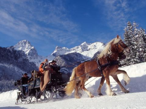 Pferdekutsche mit Menschen im Winter in Pyhrn-Priel