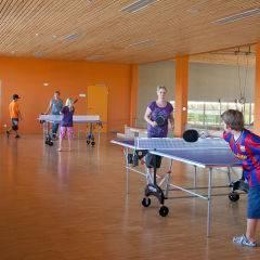 Menschen beim Tischtennis spielen in der Tischtennishalle im JUFA Hotel Leibnitz - Sport-Resort. Der Ort für erfolgreiches Training in ungezwungener Atmosphäre für Vereine und Teams.