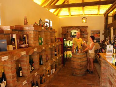 Zwei Personen bei der Weinverkostung in der Vinothek Euregio im Urlaub im JUFA Hotel Weinviertel. Der Ort für erholsamen Familienurlaub und einen unvergesslichen Wanderurlaub.