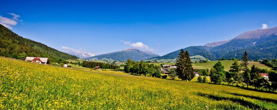 Landschaft mit Blumenwiese und blauem Himmel im Sommer. JUFA Hotels bietet Ihnen den Ort für erlebnisreichen Natururlaub für die ganze Familie.