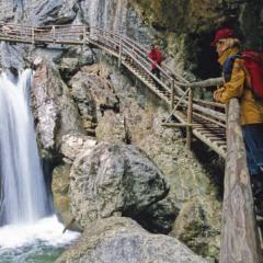 Besucher in der Bärenschützklamm auf einem Holzleiterweg neben einem Wasserfall in der Nähe von JUFA Hotels. Der Ort für erholsamen Familienurlaub und einen unvergesslichen Winter- und Wanderurlaub.