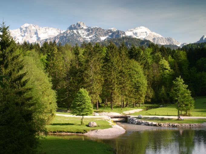 Blick vom Herzogenstuhl auf den Cumberland Wildpark Grünau im Salzkammergut in der Nähe vom JUFA Hotel Almtal. Der Ort für erholsamen Familienurlaub und einen unvergesslichen Winter- und Wanderurlaub.