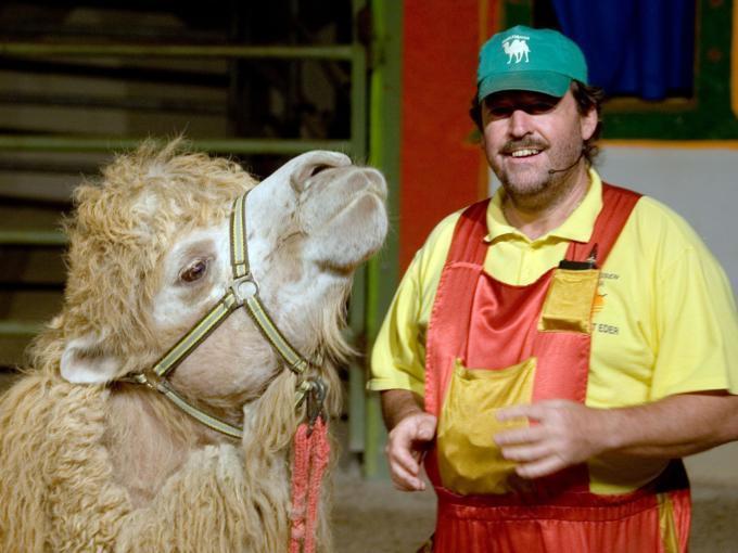 Kamel mit Tiertrainer im Kameltheater und Weisser Zoo im Mariazellerland in der Nähe von JUFA Hotels. Der Ort für erholsamen Familienurlaub und einen unvergesslichen Winter- und Wanderurlaub.