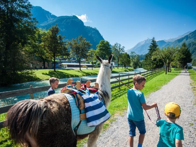 Kinder gehen mit einem Lama spazieren in der Nähe vom JUFA Hotel Kaprun. Der Ort für erholsamen Familienurlaub und einen unvergesslichen Winter- und Wanderurlaub.