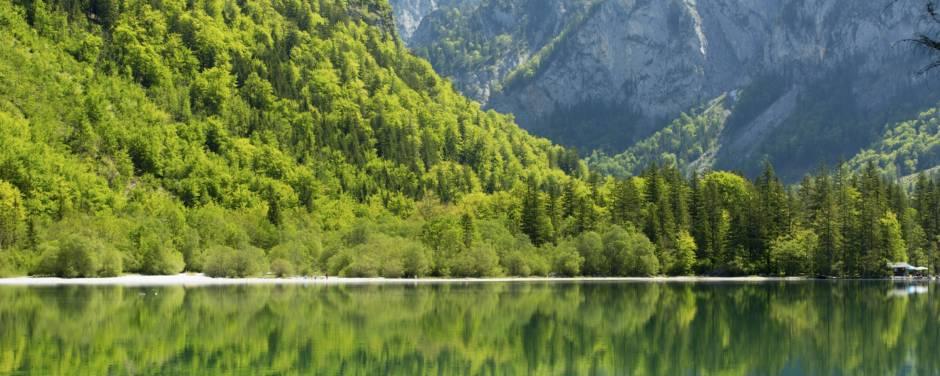 Spiegelung der Sommerlandschaft im Leopoldsteinersee in der Steiermark in der Nähe von JUFA Hotels. Der Ort für erholsamen Familienurlaub und einen unvergesslichen Winter- und Wanderurlaub.