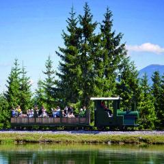 Waldeisenbahn auf der Mariazeller Bürgeralpe mit Waldeisenbahn im Mariazellerland in der Nähe von JUFA Hotels. Der Ort für erholsamen Familienurlaub und einen unvergesslichen Winter- und Wanderurlaub.