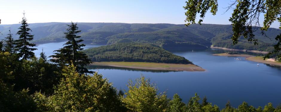Panoramablick in den Nationalpark Eifel im Sommer. JUFA Hotels bietet Ihnen den Ort für erlebnisreichen Natururlaub für die ganze Familie.
