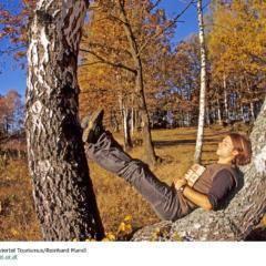 Mann rastet auf Baumstamm bei sonnigem Herbstwetter im Nationalpark Thayatal in der Nähe vom JUFA Hotel Waldviertel. Der Ort für erholsamen Familienurlaub und einen unvergesslichen Winter- und Wanderurlaub.