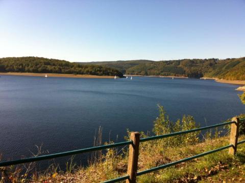 Sie sehen den Blick auf den Rursee mit Segelbooten und Wald im Hintergrund. JUFA Hotels bietet Ihnen den Ort für erlebnisreichen Natururlaub für die ganze Familie.