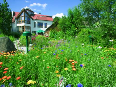 Blühender Kräuterschaugarten im Kräuterpfarrer Weidingerzentrum in Karlstein an der Thaya in der Nähe von JUFA Hotels. Der Ort für erholsamen Familienurlaub und einen unvergesslichen Winter- und Wanderurlaub.