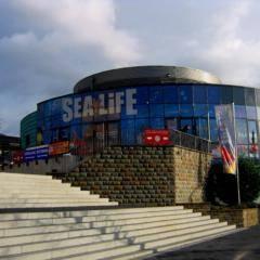 Eingang vom Sea Life Königswinter in Nordrhein-Westfalen. JUFA Hotels bietet kinderfreundlichen und erlebnisreichen Urlaub für die ganze Familie.
