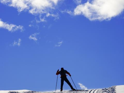 Langläufer beim Wintersport auf einer  Langlaufloipe bei herrlichem Wetter in der Nähe von JUFA Hotels. Der Ort für erholsamen Familienurlaub und einen unvergesslichen Winterurlaub.