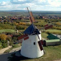 Windmühle in der Weinstadt Retz im Weinviertel in der Nähe vom JUFA Weinviertel - Hotel in der Eselsmühle. Der Ort für erholsamen Familienurlaub und einen unvergesslichen Winter- und Wanderurlaub.
