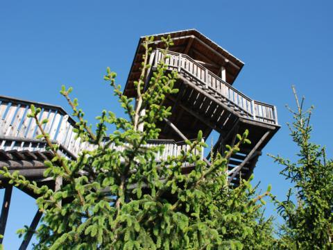 Wipfelwanderweg Rachau in der Steiermark in der Nähe von JUFA Hotels. Der Ort für erholsamen Familienurlaub und einen unvergesslichen Winter- und Wanderurlaub.