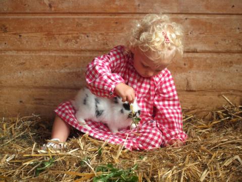 Ein kleines Mädchen sitzt im Heu und füttert ein Kaninchen, das auf ihrem Schoß sitzt. JUFA Hotels bietet Ihnen den Ort für erlebnisreichen Natururlaub für die ganze Familie.