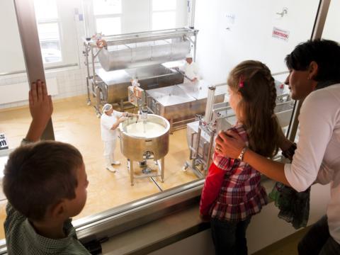 Eine Familie schaut durch ein Fenster in die gläsernen Molkerei in der Sonnenalm Milcherlebniswelt in Kärnten. JUFA Hotels bietet kinderfreundlichen und erlebnisreichen Urlaub für die ganze Familie.