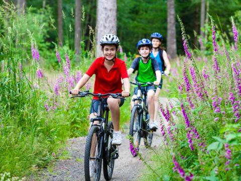 Drei Kinder mit Farradhelmen fahren auf ihren Mountainbikes durch den Wald. JUFA Hotels bietet Ihnen den Ort für erlebnisreichen Natururlaub für die ganze Familie.