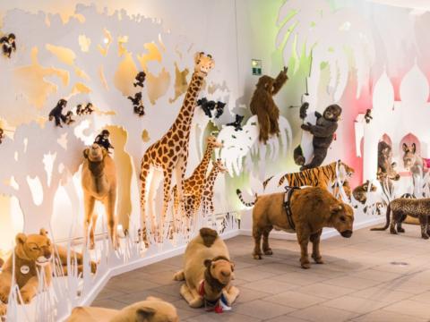 Ein Raum voll mit verscheidenen Stofftieren im steiff-Mueseum in Giengen an der Brenz  in der Nähe vom JUFA Hotel Nördlingen. Der Ort für erholsamen Familienurlaub und einen unvergesslichen Winter- und Wanderurlaub.