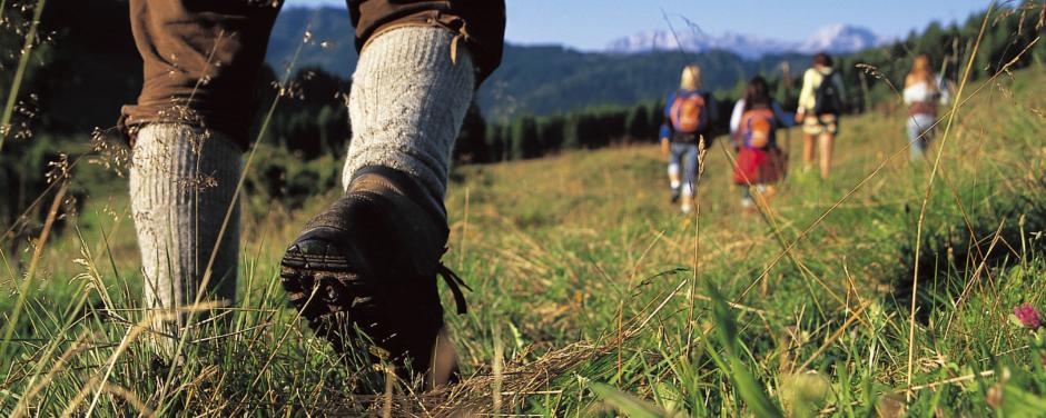 Gruppe von Erwachsenen beim Wandern im abwechslungsreichen Wandergebiet Weissensee in Kärnten. JUFA Hotels bietet Ihnen den Ort für erlebnisreichen Natururlaub für die ganze Familie.