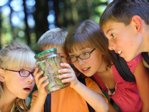 Vier Kinder stehen um ein Einmachgleas und bestaunen den Inhalt. JUFA Hotels bietet Ihnen den Ort für erlebnisreichen Natururlaub für die ganze Familie.