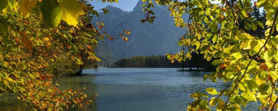 Sie sehen eine Aufnahme des Almsees von Mission Grüner Planet mit Bäumen und Gebirge im Hintergrund. JUFA Hotels bietet Ihnen den Ort für erlebnisreichen Natururlaub für die ganze Familie.
