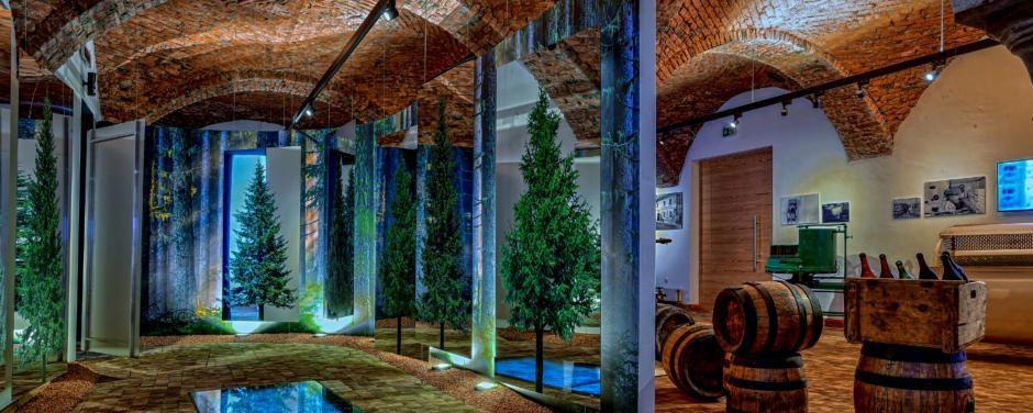 Sie sehen den Gewölbekeller mit Fässern in der Brauerei der Sinne in Murau. JUFA Hotels bieten erholsamen Familienurlaub und einen unvergesslichen Winter- und Wanderurlaub