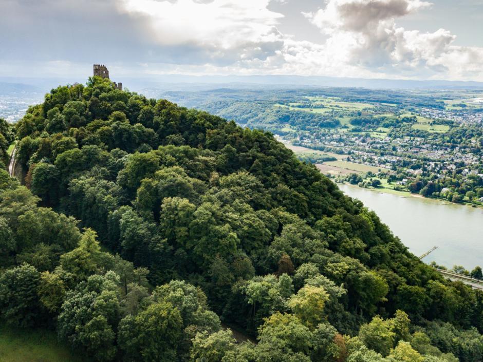 Sie sehen den imposanten Drachenfels in Königswinter mit Blick auf den schönen Rhein im Sommer. JUFA Hotels bietet erlebnisreichen Städtetrip für die ganze Familie und den idealen Platz für Ihr Seminar.