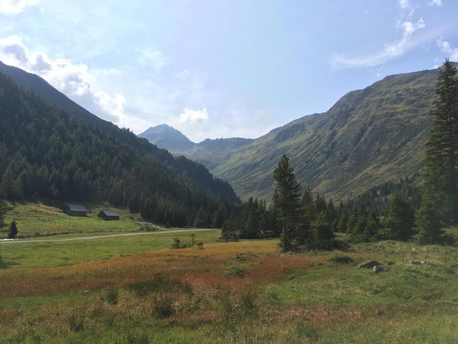Sie sehen den Eselsberger Almerlebnisweg mit schönem Bergpanorama im Sommer. JUFA Hotels bietet erholsamen Familienurlaub und einen unvergesslichen Winter- und Wanderurlaub.