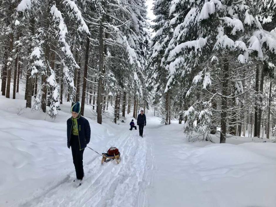 Sie sehen eine Familie beim Schlittenfahren am Weissensee in Kärnten im Winter. JUFA Hotels bietet erholsamen Familienurlaub und einen unvergesslichen Winterurlaub.