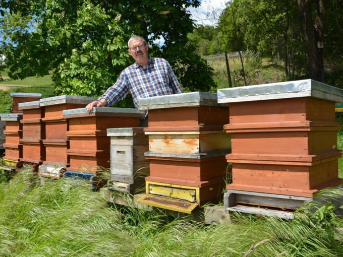 Sie sehen einen Mann mit Bienenstöcken von Imkerei Tauchmann in Söchau. JUFA Hotels bietet kinderfreundlichen und erlebnisreichen Urlaub für die ganze Familie.