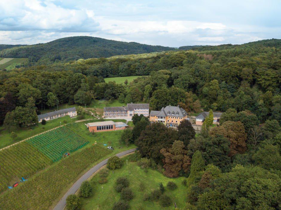 Sie sehen eine Außenansicht vom JUFA Hotel Königswinter/Bonn mit einem Weinberg im Sommer. JUFA Hotels bietet erlebnisreichen Städtetrip für die ganze Familie und den idealen Platz für Ihr Seminar.