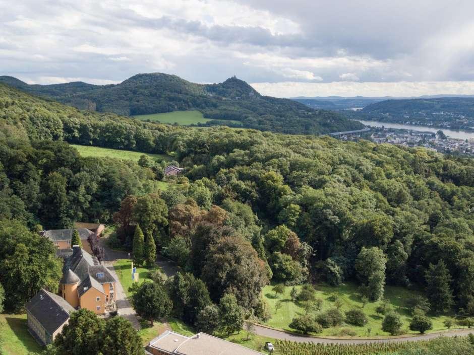Sie sehen eine Außenansicht vom JUFA Hotel Königswinter im Rheintal im Sommer. JUFA Hotels bietet erlebnisreichen Städtetrip für die ganze Familie und den idealen Platz für Ihr Seminar.