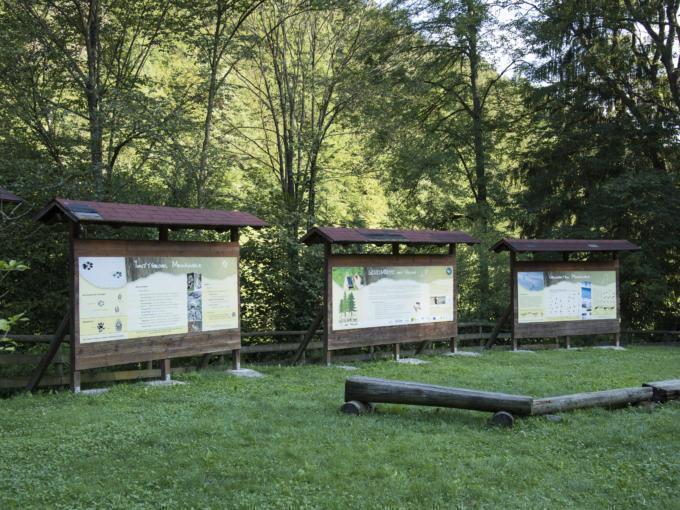 Infotafeln zum Thema Natur und Tier im Naturschutzzentrum Bruck an der Mur im Sommer. JUFA Hotels bietet Ihnen den Ort für erlebnisreichen Natururlaub für die ganze Familie.