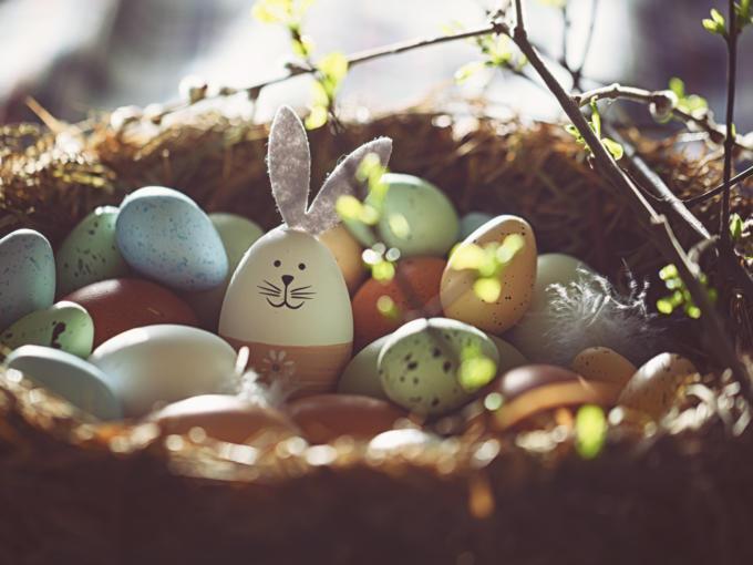 Sie sehen Ostereier in einer Schale, ein Osterei angemalen als Hase.