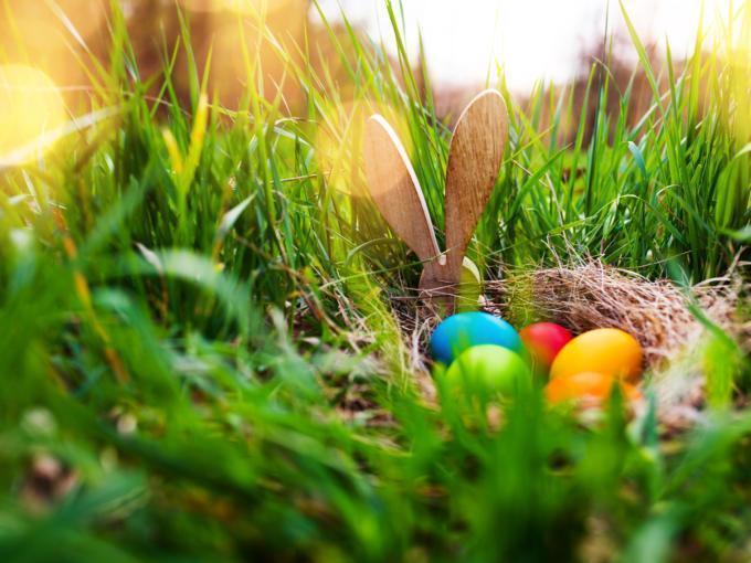 Sie sehen eine Schale mit bunten Ostereiern in der Frühlingswiese.