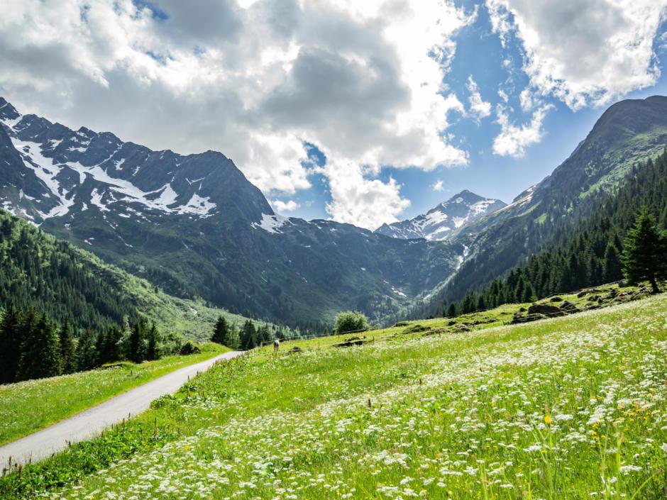 Sie sehen das Gschnitztal. Das JUFA Hotel Wipptal ist der perfekte Ausgangspunkt für einen erlebnisreichen Wander- und Bergurlaub.