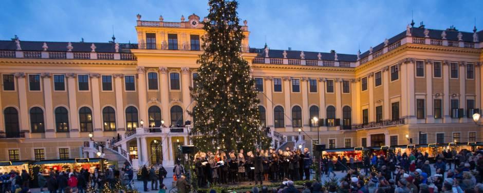 Sie sehen ein Konzert auf dem Weihnachtsmarkt vor Schloss Schönbrunn in Wien mit Christbaum. JUFA Hotels bietet erholsamen Familienurlaub und unvergesslichen Winterurlaub.