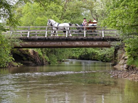 Kutschenfahrt über Brücke mit Schlosskutscher Rudi Almer im Sommer. JUFA Hotels bieten erholsamen Familienurlaub und einen unvergesslichen Winter- und Wanderurlaub.