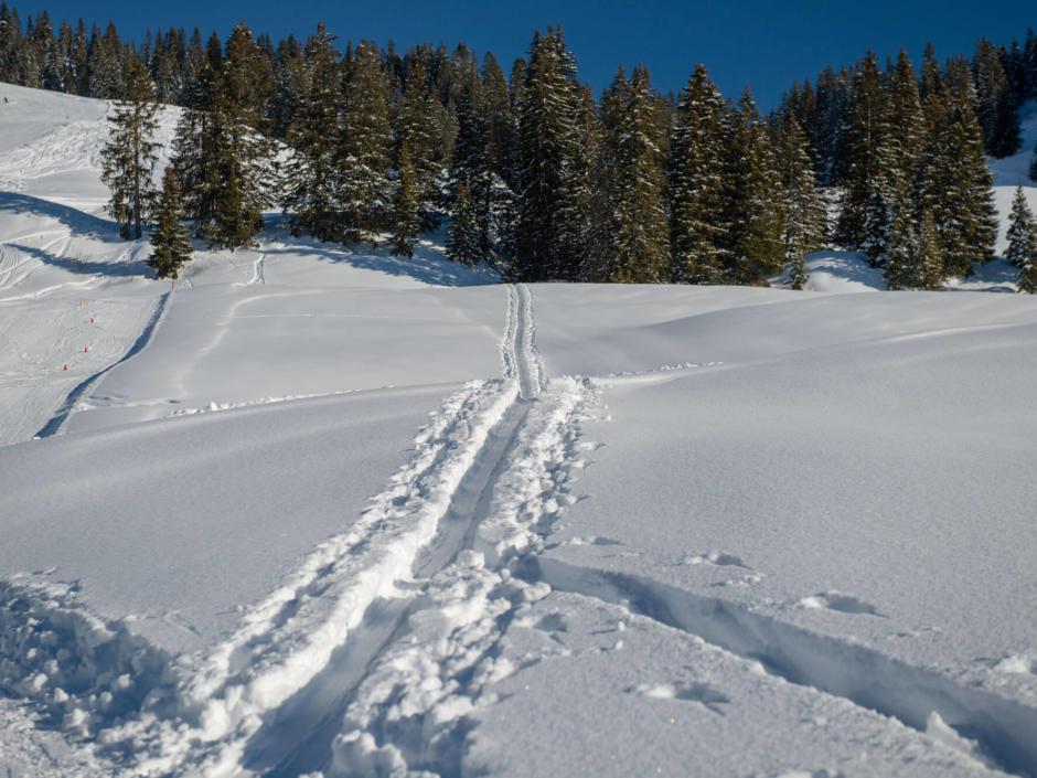 Sie sehen eine Winterlandschaft in Laterns.