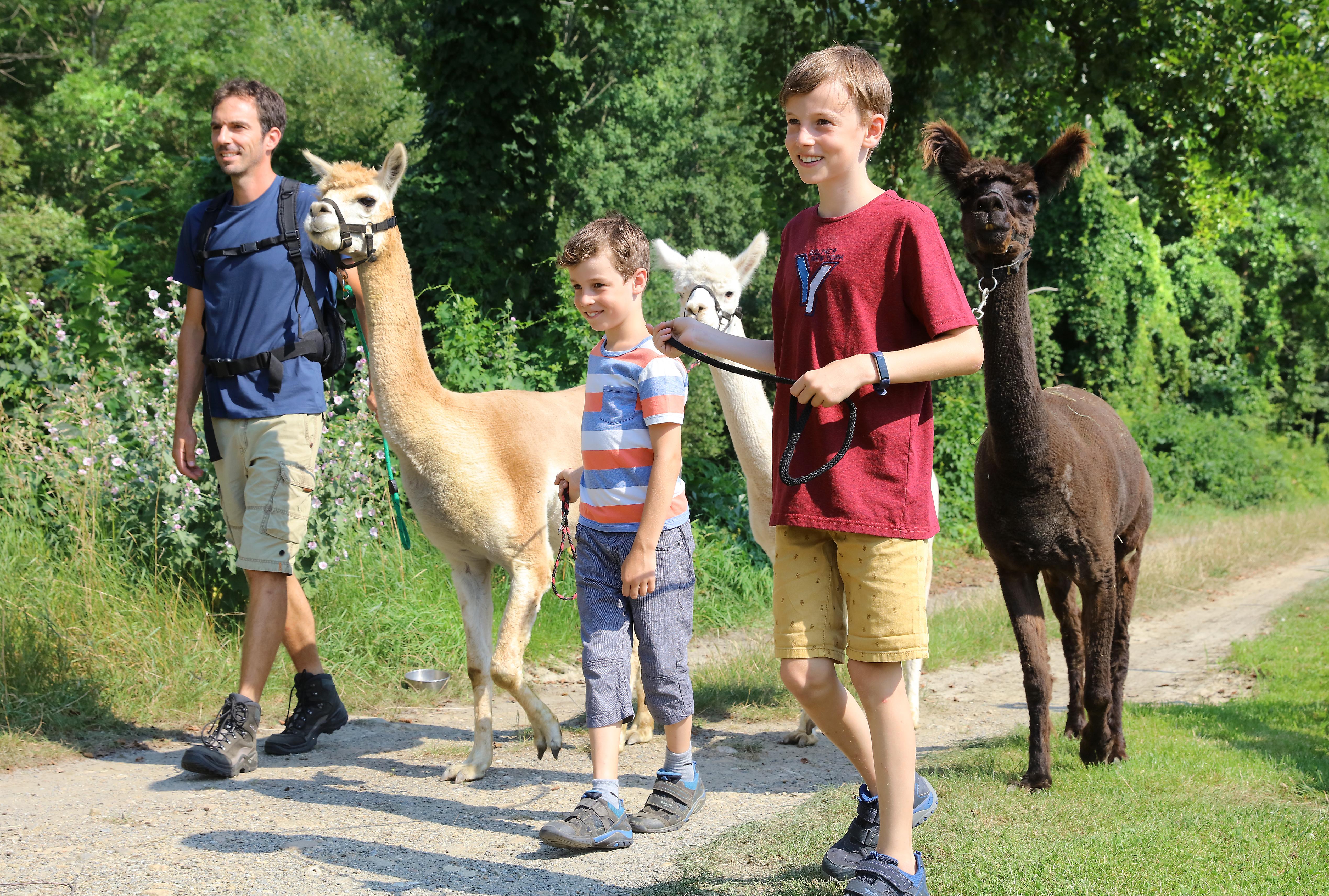 Sie sehen eine Familie beim Spazieren mit Alpakas. JUFA Hotels bietet erholsamen Familienurlaub und einen unvergesslichen Winter- und Wanderurlaub.