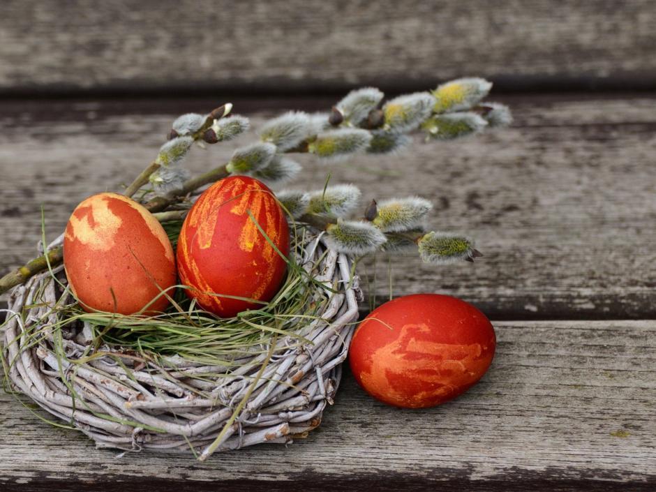 Sie sehen rote Ostereier im Weidenkranz mit Palmkätzchen verziert.