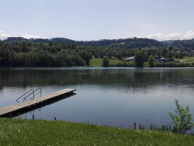 Sie sehen den Pibersteinersee in der Nähe vom JUFA Hotel Maria Lankowitz mit einem Steg im Sommer. JUFA Hotels bietet tollen Sommerurlaub an schönen Seen für die ganze Familie.
