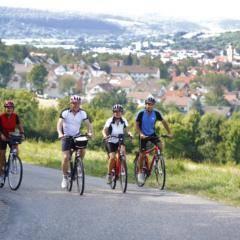 Sie sehen zwei Paare beim Radfahren im Taubertal bei Bad Mergentheim im Sommer. JUFA Hotels bietet erholsamen Familienurlaub und einen unvergesslichen Winter- und Wanderurlaub.