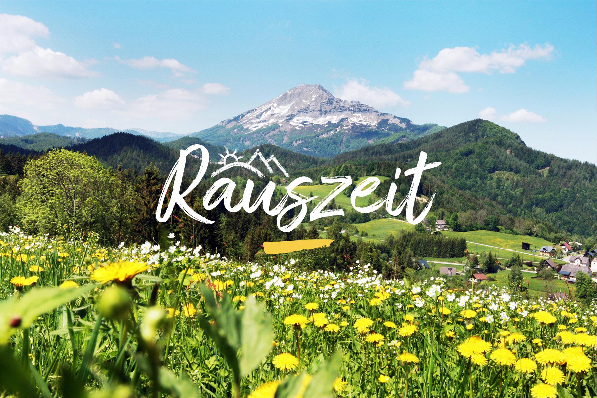 Sie sehen eine Blumenwiese in Annaberg mit Blick auf den Ötscher. JUFA Hotels bietet erholsamen Familienurlaub und einen unvergesslichen Wanderurlaub